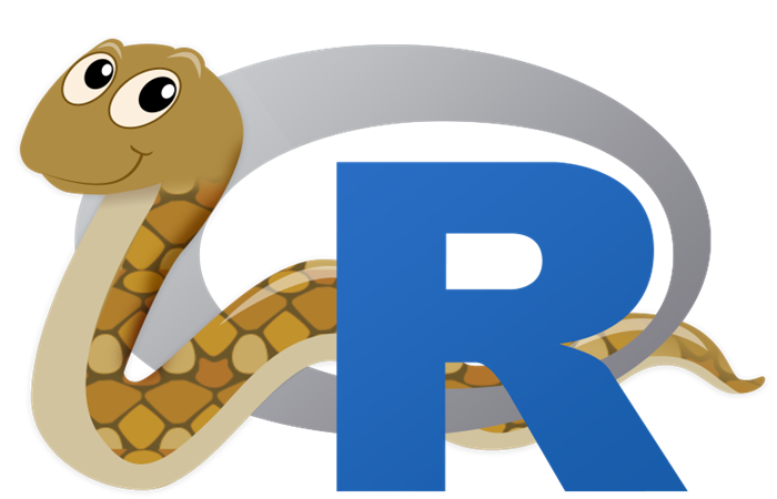 Using reticulate in an R Package